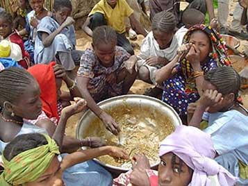 world food problems essay