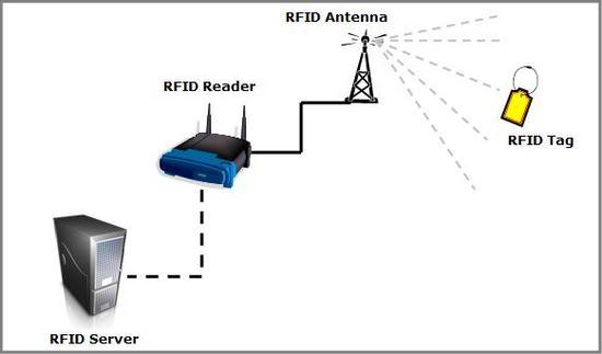 RFID- Reading Network
